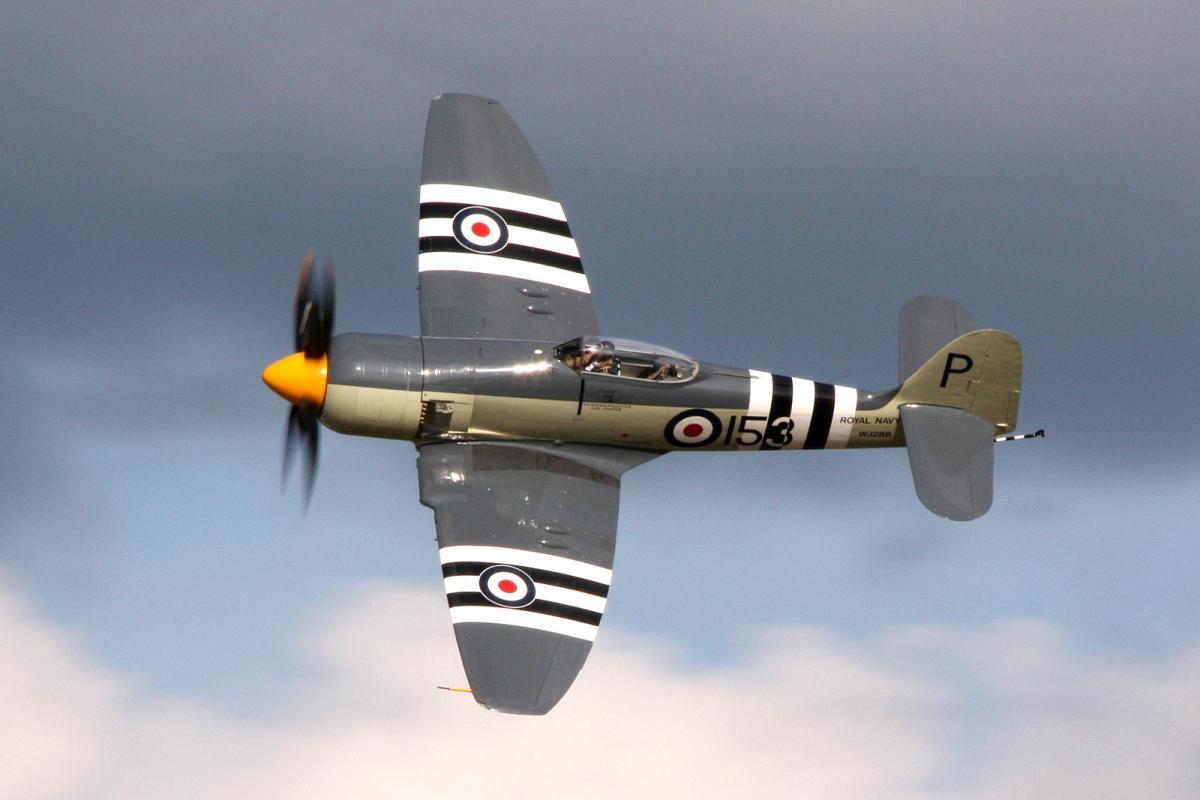 Hawker_Sea_Fury_WJ288_at_2009_Oshkosh_Air_Show_Flickr_3821026519.jpg