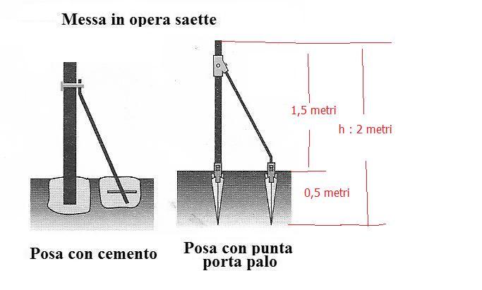 palo 3.jpg